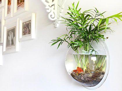 选个合适的壁挂式鱼缸尺寸,让鱼游在墙
