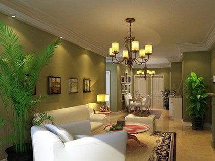 客厅风水植物摆放的四大原则,为家添彩增运