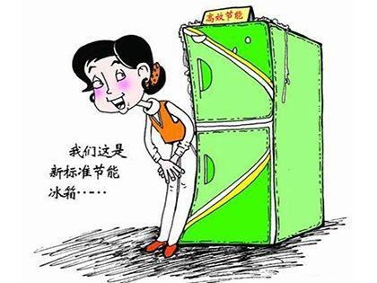怎么选购冰箱:实用才是硬道理