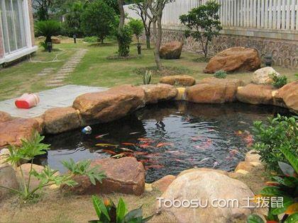 庭院鱼池风水 美观带来的好运势