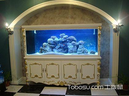 浮法玻璃鱼缸怎么样?如何选购鱼缸呢?