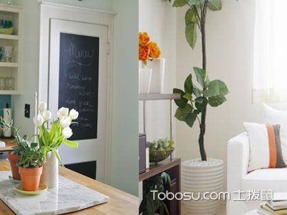 室内植物装饰法则二,完美契合家居风格