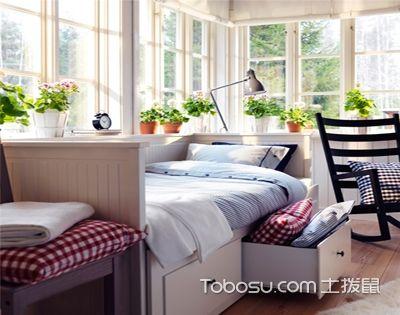 卧室绿植布置,了解适合卧室的花草
