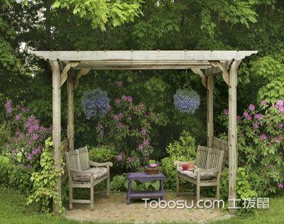 庭院绿化不容错过的13种吉祥植物