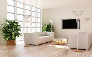 【客厅植物】客厅植物摆放风水,客厅植物摆放什么好,禁忌,摆放效果图