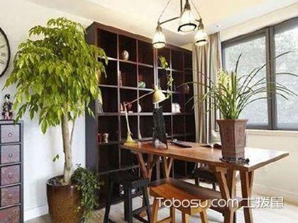 掌握这些细节,让植物更好地装饰书房