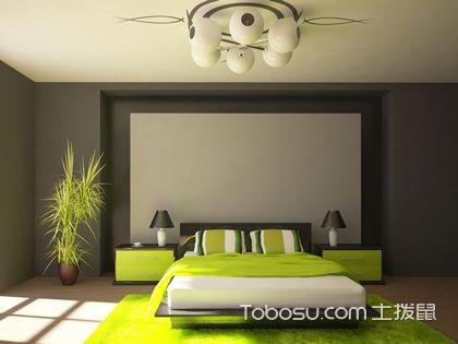 如何用植物点缀卧室?你可以这么做