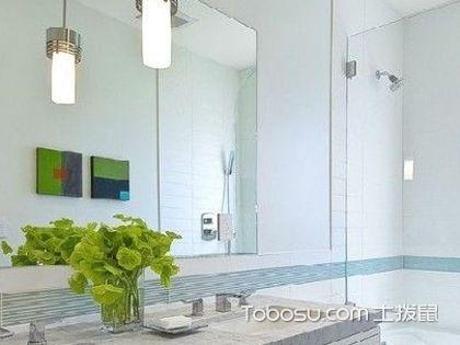 植物装饰卫浴间,怎么搭配才比较好呢?