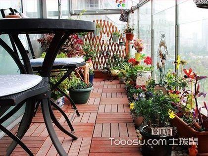 过道、玄关、阳台,各角落布置植物增家居气质分