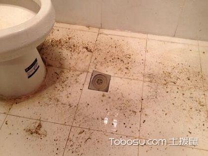 衛生間怎樣安裝地漏?這些方法你一定用的到