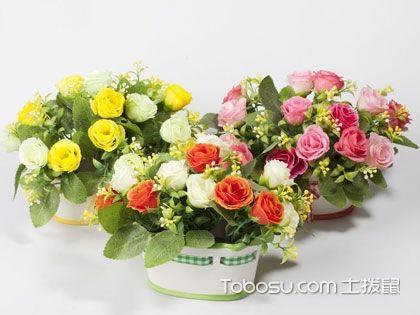 家居仿真花卉保養以及清潔要點,你get了嗎?