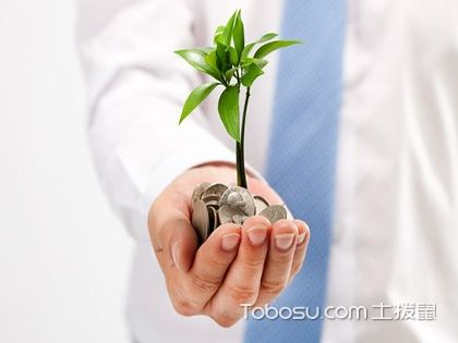 金錢樹的養殖方法和注意事項,這些細節不能少