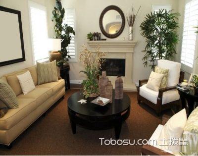 客厅放什么植物旺财,选对植物有门道!