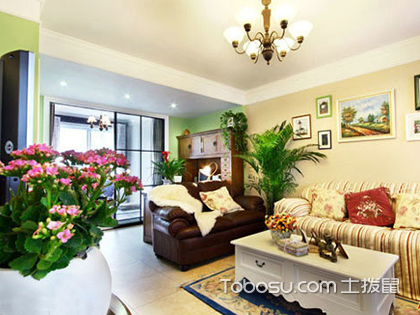 客厅东南角放什么植物好?正确选择让运势大提升!