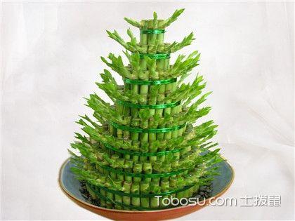富贵竹发黄怎么办,富贵竹怎么养才能更旺盛?
