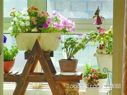 阳台自制花架步骤,教你三个步骤自制阳台花架