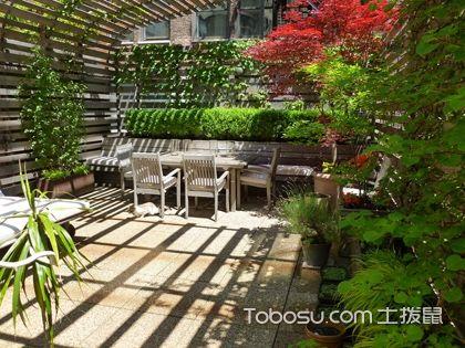 小户型阳台花园设计,如何利用植物来打造小户型阳台的风水