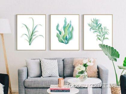 家居植物怎么摆放最招财 家居植物摆放风水禁忌
