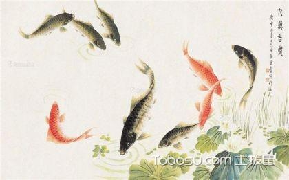 九鱼图中的黑鱼意义,吉祥如意的象征