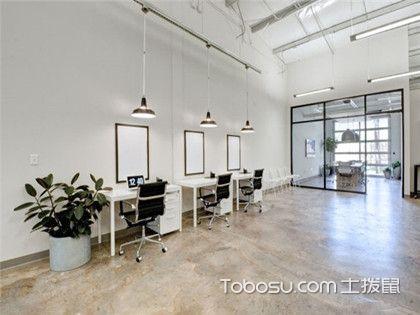 办公室绿植怎么选择?办公室可以摆放哪些绿植?