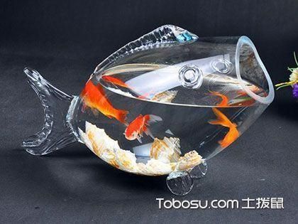金鱼缸的摆放风水位置有何讲究?养鱼的禁忌
