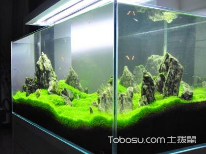 浮法玻璃鱼缸好吗,给鱼儿换个新家