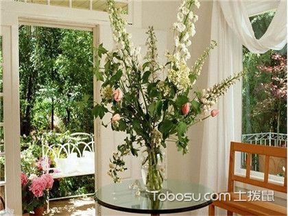 家里养甚么植物风水好,这些植物值得你选择