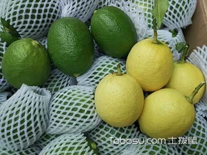 青柠檬和黄柠檬的区别,柠檬水的功效与作用