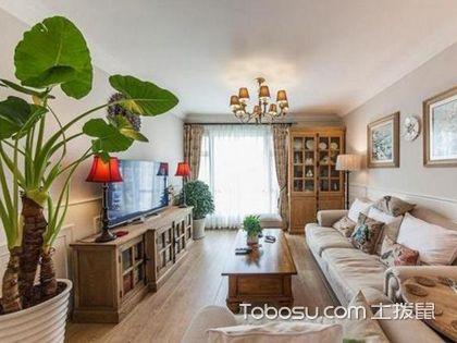 客厅放什么植物最好,客厅植物的风水讲究有哪些