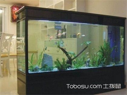 浮法玻璃魚缸真的好嗎,愛護自己家的小生靈