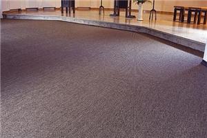 【会议室地毯】会议室地毯图案搭配_材质介绍_品牌价格_效果图