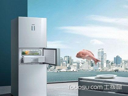 什么牌子的冰箱好,掌握这三点错不了