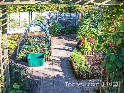 庭院菜地設計實景圖,庭院菜地設計該注意哪些?