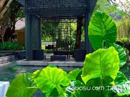 新中式庭院景观设计,移步换景的禅意空间
