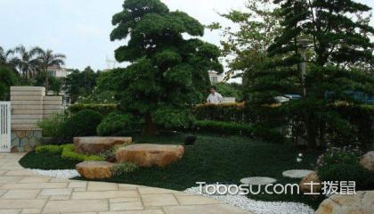 公园室内园林设计,有什么设计方法