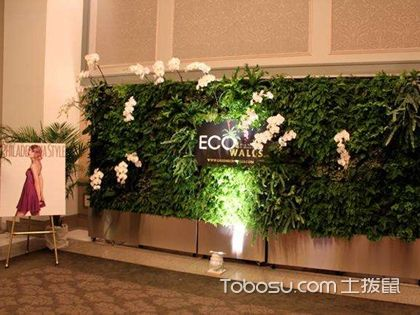 商场绿化,商场的绿化设计要如何选择植物