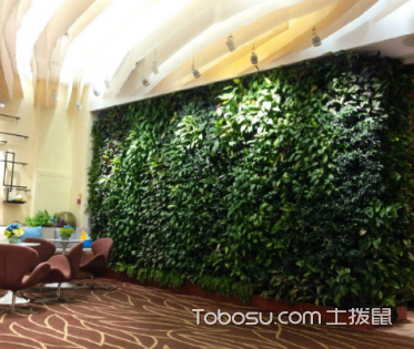 室内园林景观设计,室内装修有哪些要点?