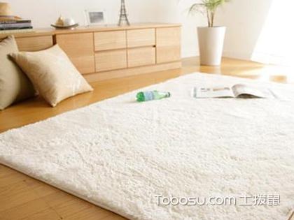 家装地毯效果图,地毯装修有哪些风格值得借鉴