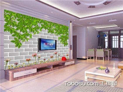 简约大气电视背景墙之设计要点