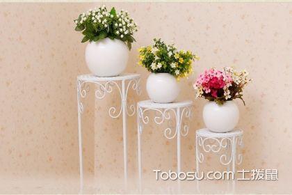 花架如何清洗与保养,花架的搭配技巧有哪些