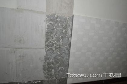 贴墙砖打灰技巧,贴墙砖使用什么胶更好