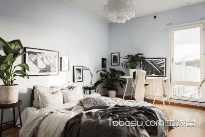 卧室适合摆放的绿植有哪些?卧室里面可以摆放哪些绿色植物