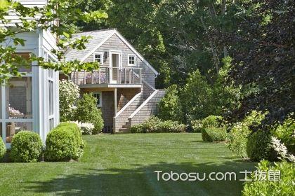 别墅花园适宜种什么树,快来了解一下