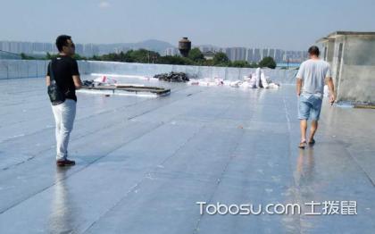 屋顶防水卷材,防水卷材哪个好
