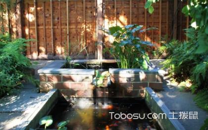 花园鱼池设计效果图,鱼池设计要注意什么?