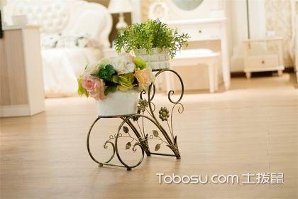 花架怎么保养,4款不同材质花架保养方法