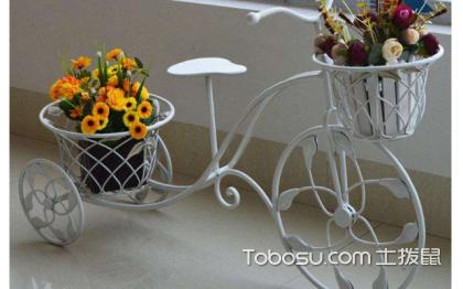家装客厅花架图片,带你感受田园气息