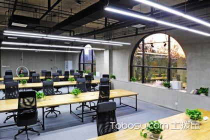 辦公室綠植如何選擇?好看的辦公室綠植選購技巧介紹