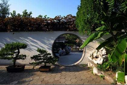 靈動自然的庭院小景,給你一處禪意空間
