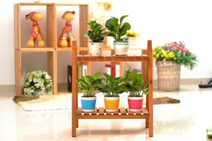 室内花架选购技巧有哪些?花架材质以及选购方法介绍
